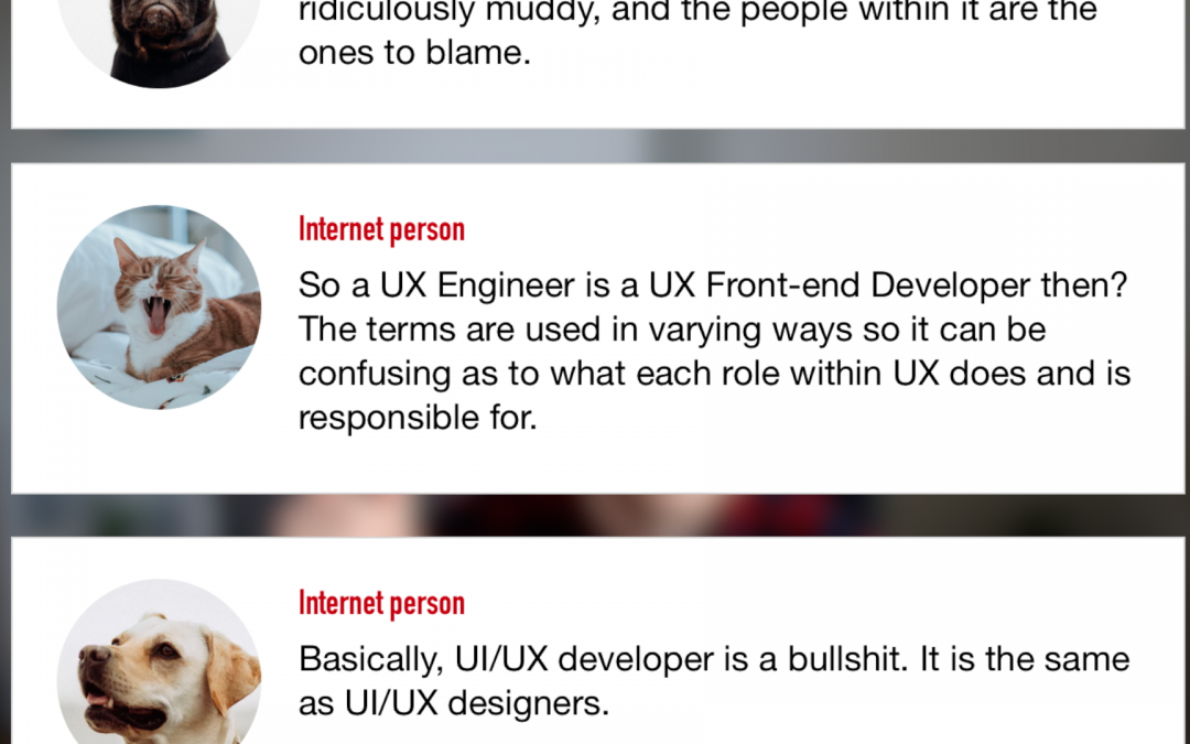 UX Developer: Whose Legos Are They Anyways?